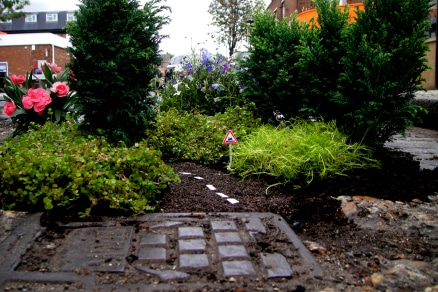 guerilla gardening 1