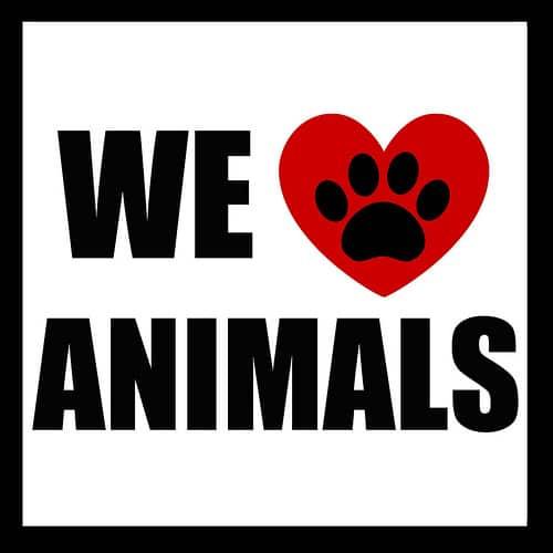 Sign we love animals