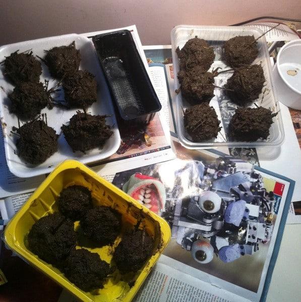 Guerilla Gardening - Bombas de semillas