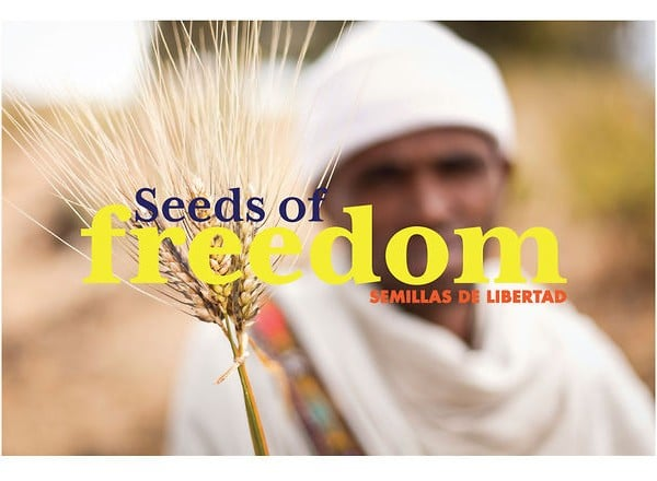 semillas de libertad (seeds of freedom)