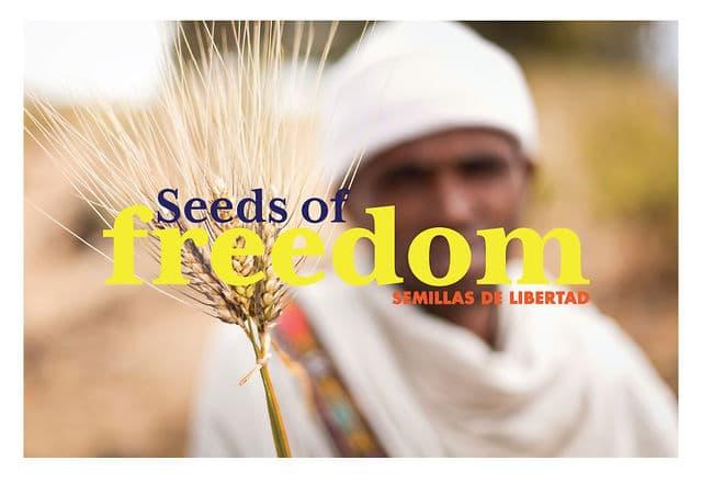 semillas de libertad (seeds of freedom)