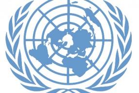 La ONU, en 2010, ya nos recomendó llevar una alimentación sin productos animales, que cuida más la salud y los recursos del planeta