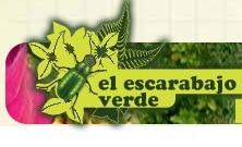 el escarabajo verde logo