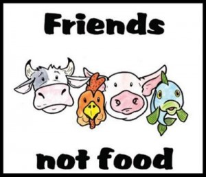 veganismo: amigos no comida