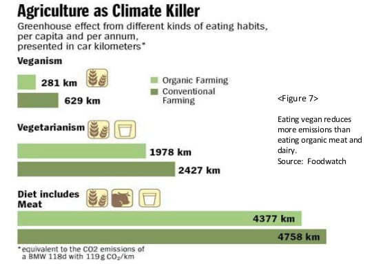 Efecto invernadero al año en km de coche