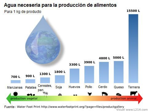 Agua necesaria para producis 1kg de alimentos