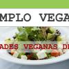 Templo Vegano – Restaurante Vegano Madrid