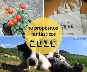 10 propositos fantasticos